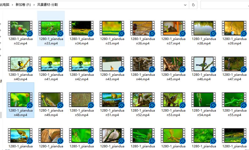2万个风景视频素材分割成品,音乐mv素材视频51G 视频素材