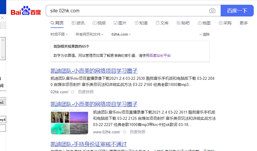 image.png 如果检查你的网站被收录页面数量? 未分类